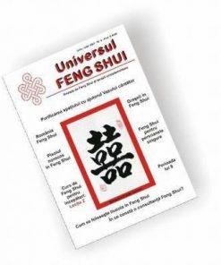 Universul Feng Shui Nr. 2 - PDF